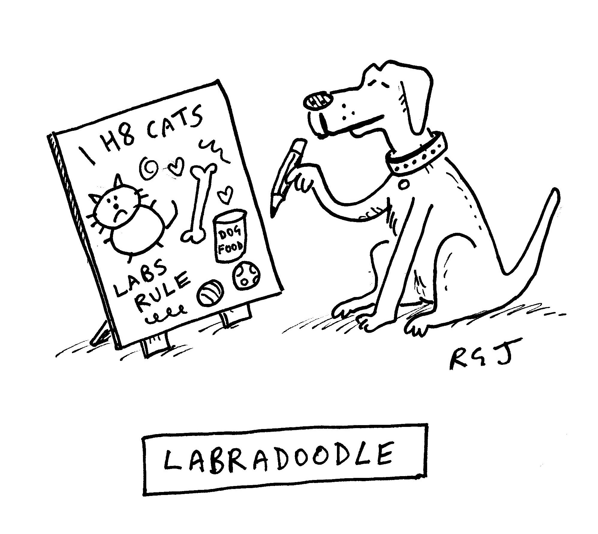 Labradoodle